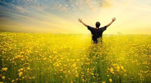 Самореализация, смысл жизни — как найти себя